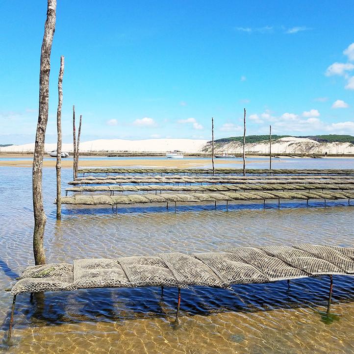 village vacances bretagne hauteville sur mer decouverte